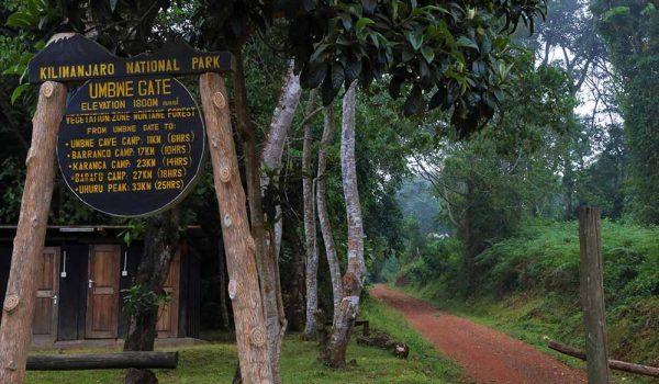 gate umbwe